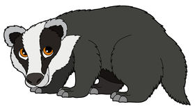 Badger clipart #20, Download drawings