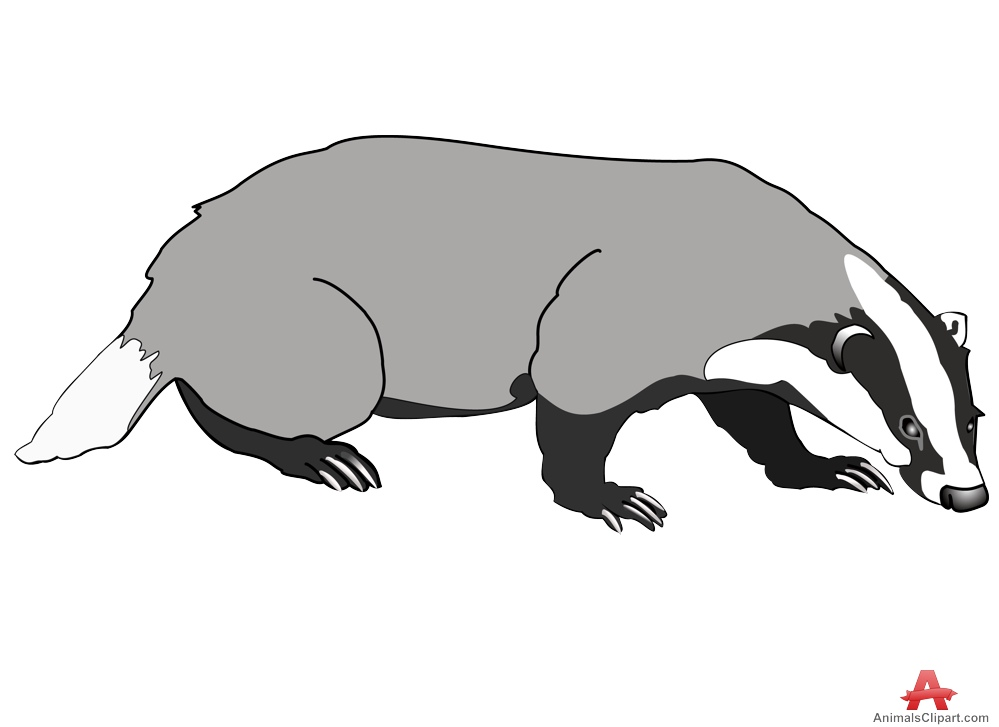 Badger clipart #3, Download drawings
