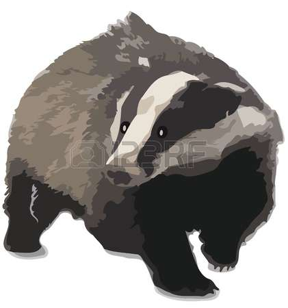Badger clipart #13, Download drawings