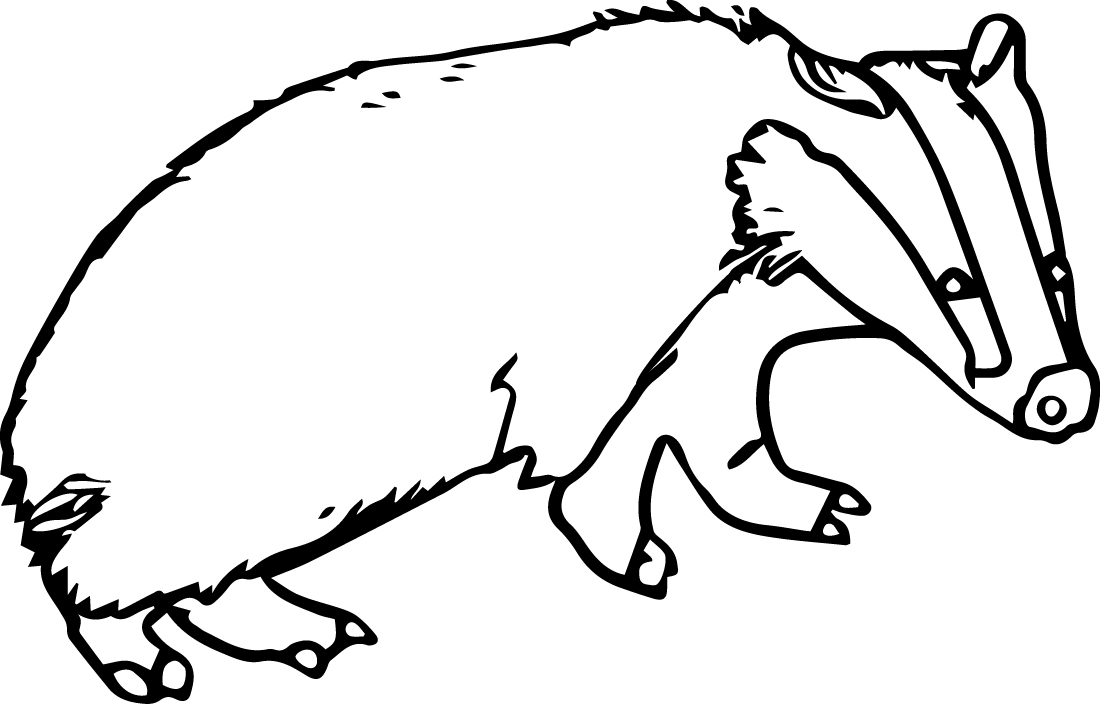 Badger coloring #13, Download drawings