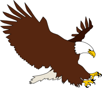 Bald Eagle clipart #5, Download drawings
