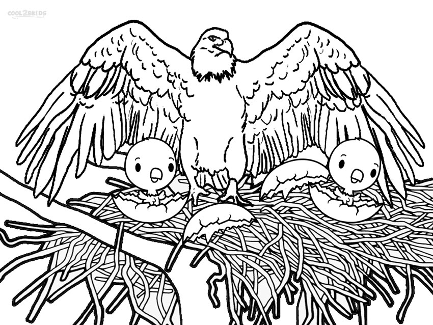 Bald Eagle coloring #17, Download drawings