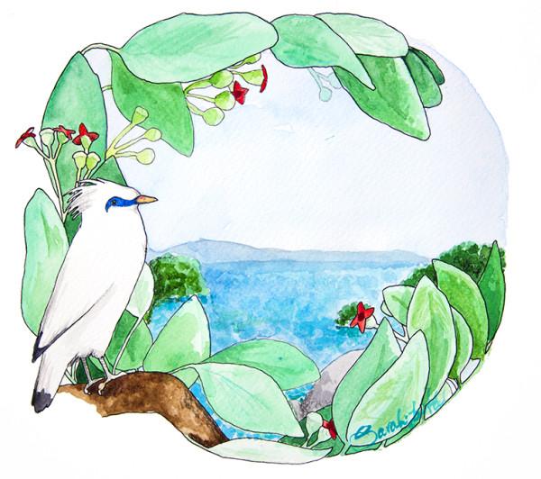 Bali Myna clipart #1, Download drawings