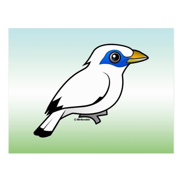 Bali Myna clipart #2, Download drawings