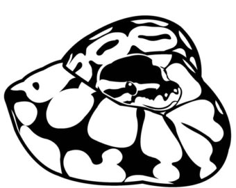 Ball Python clipart #20, Download drawings