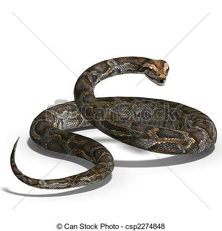 Ball Python clipart #8, Download drawings