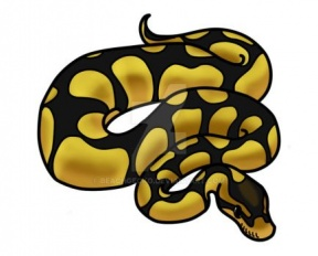 Ball Python clipart #7, Download drawings
