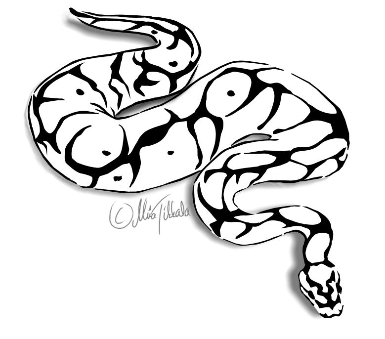 Ball Python clipart #17, Download drawings