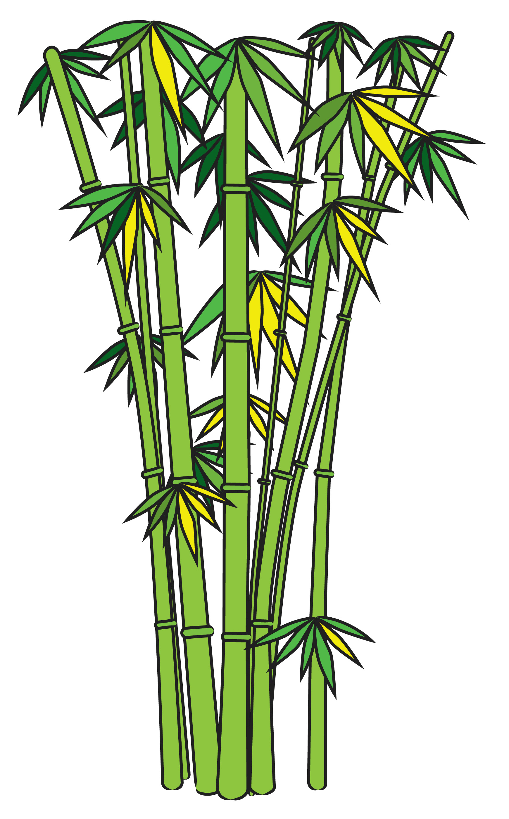 Bamboo clipart #3, Download drawings
