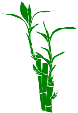 Bamboo clipart #17, Download drawings