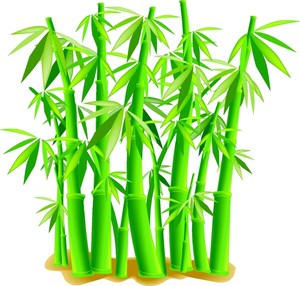 Bamboo clipart #14, Download drawings