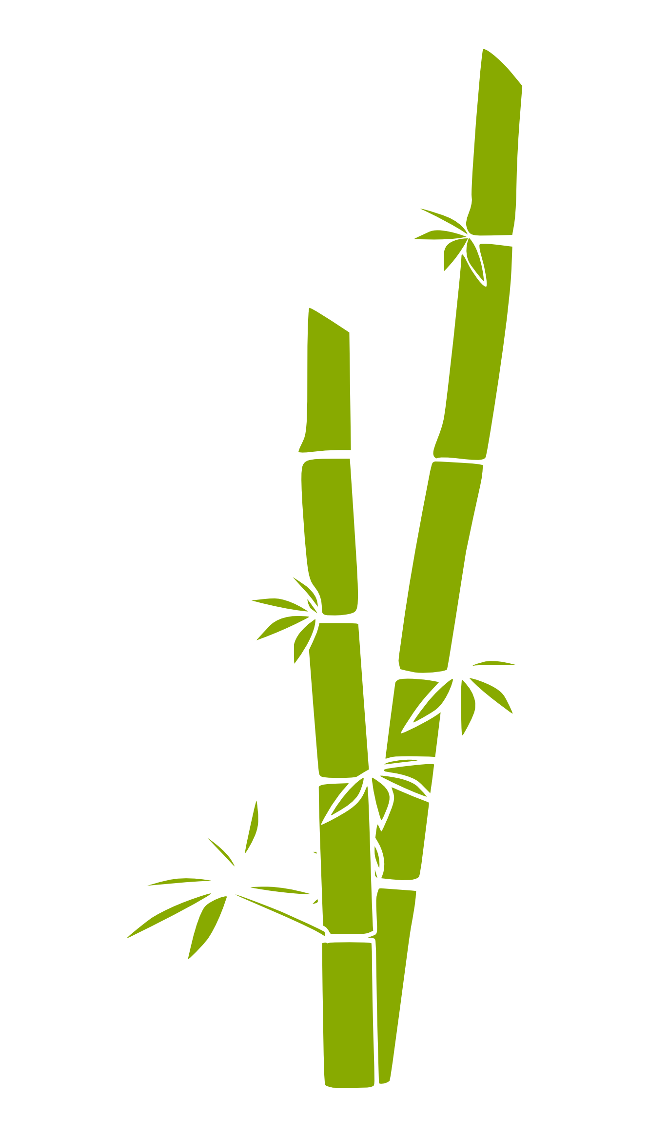 Bamboo clipart #13, Download drawings