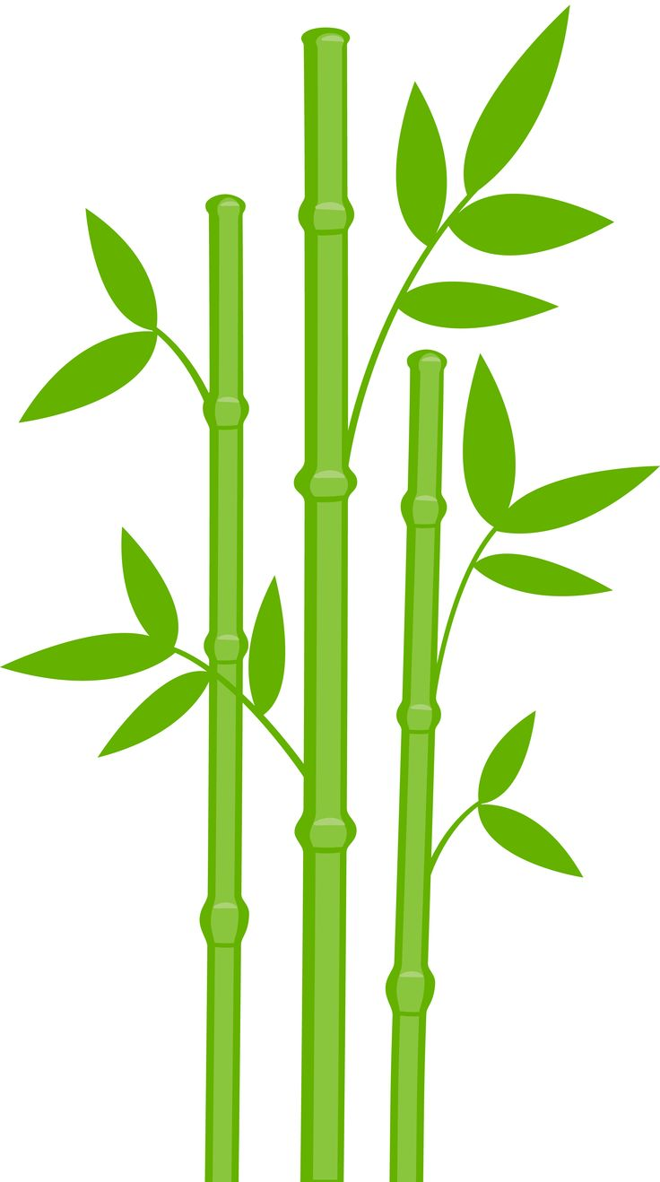 Bamboo clipart #19, Download drawings