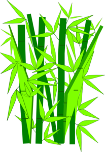 Bamboo clipart #18, Download drawings