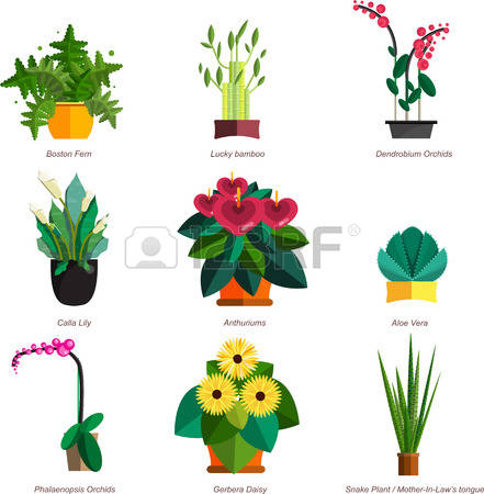 Bamboo Snake clipart #7, Download drawings
