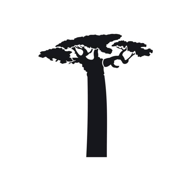 Baobab Tree clipart #6, Download drawings