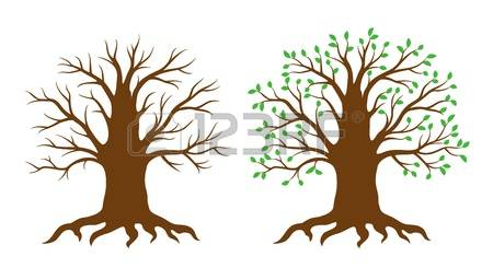 Baobab Tree clipart #4, Download drawings