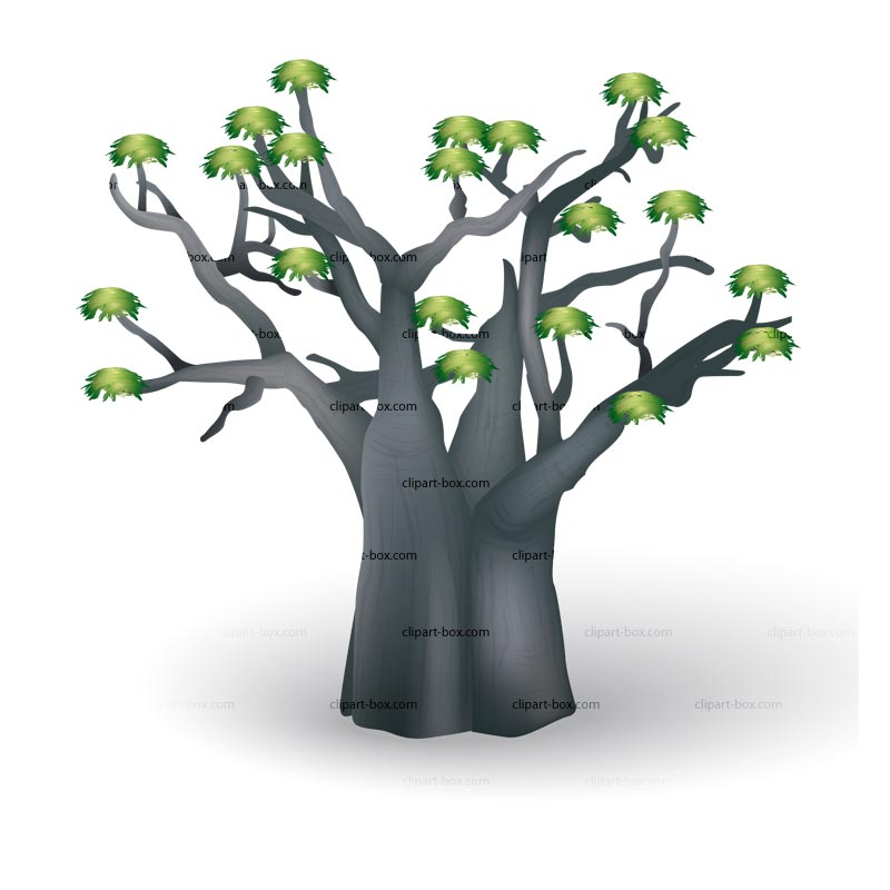 Baobab Tree clipart #3, Download drawings