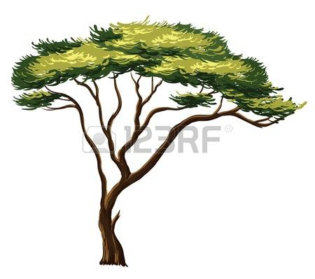 Baobab Tree clipart #15, Download drawings