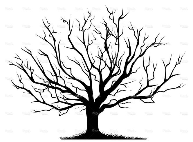 bare tree svg #750, Download drawings