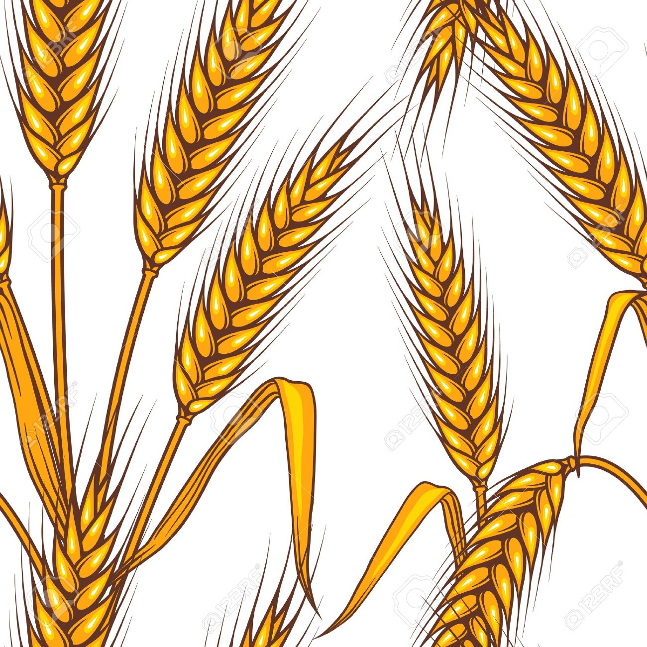 Barley clipart #11, Download drawings