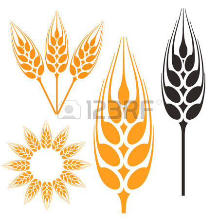 Barley clipart #8, Download drawings