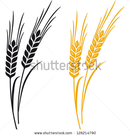 Barley clipart #18, Download drawings