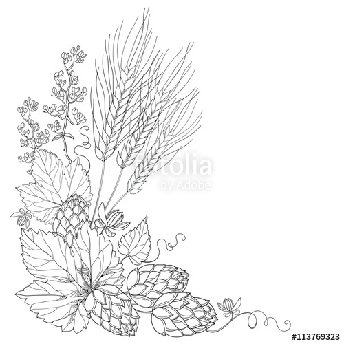 Barley Coloring Download Barley Coloring For Free 2019