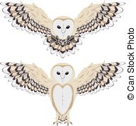 Barn Owl clipart #6, Download drawings