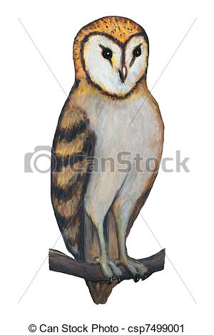 Barn Owl clipart #15, Download drawings