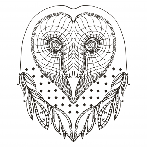 Barn Owl coloring #1, Download drawings