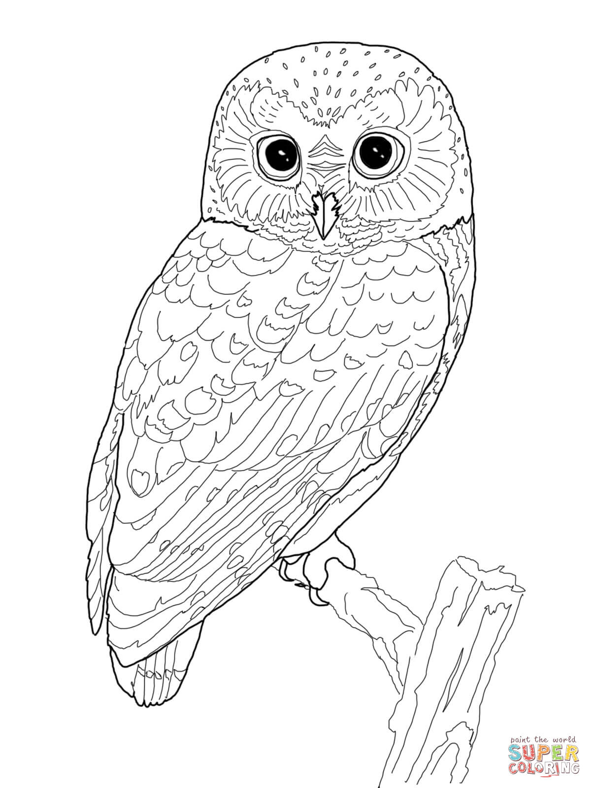 Eagle-owl coloring #10, Download drawings