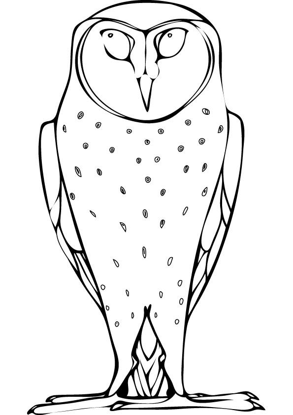 Barn Owl coloring #5, Download drawings