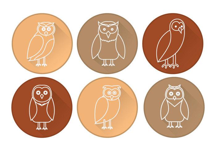 Barn Owl svg #5, Download drawings