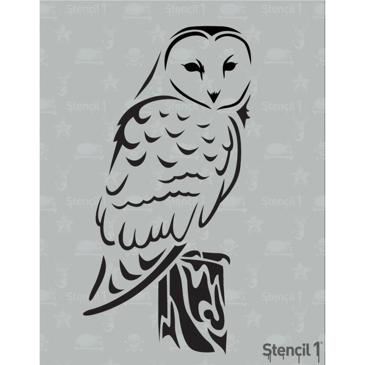 Barn Owl svg #20, Download drawings