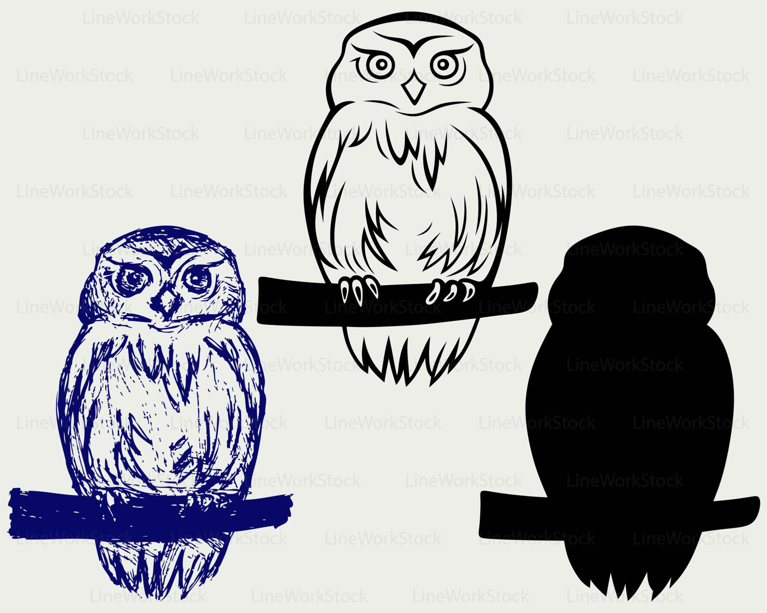 Barred Owl svg #19, Download drawings