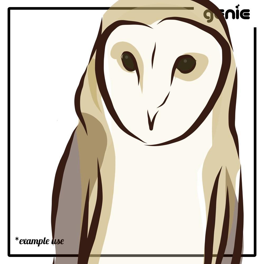 Barn Owl svg #7, Download drawings