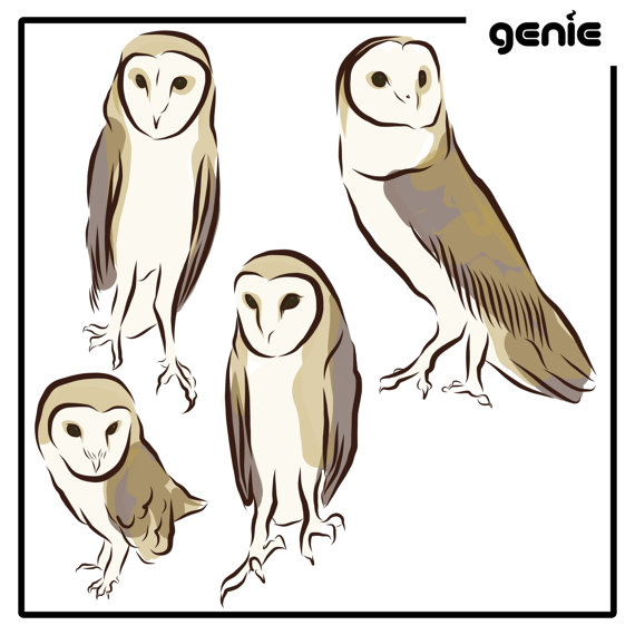 Barn Owl svg #12, Download drawings