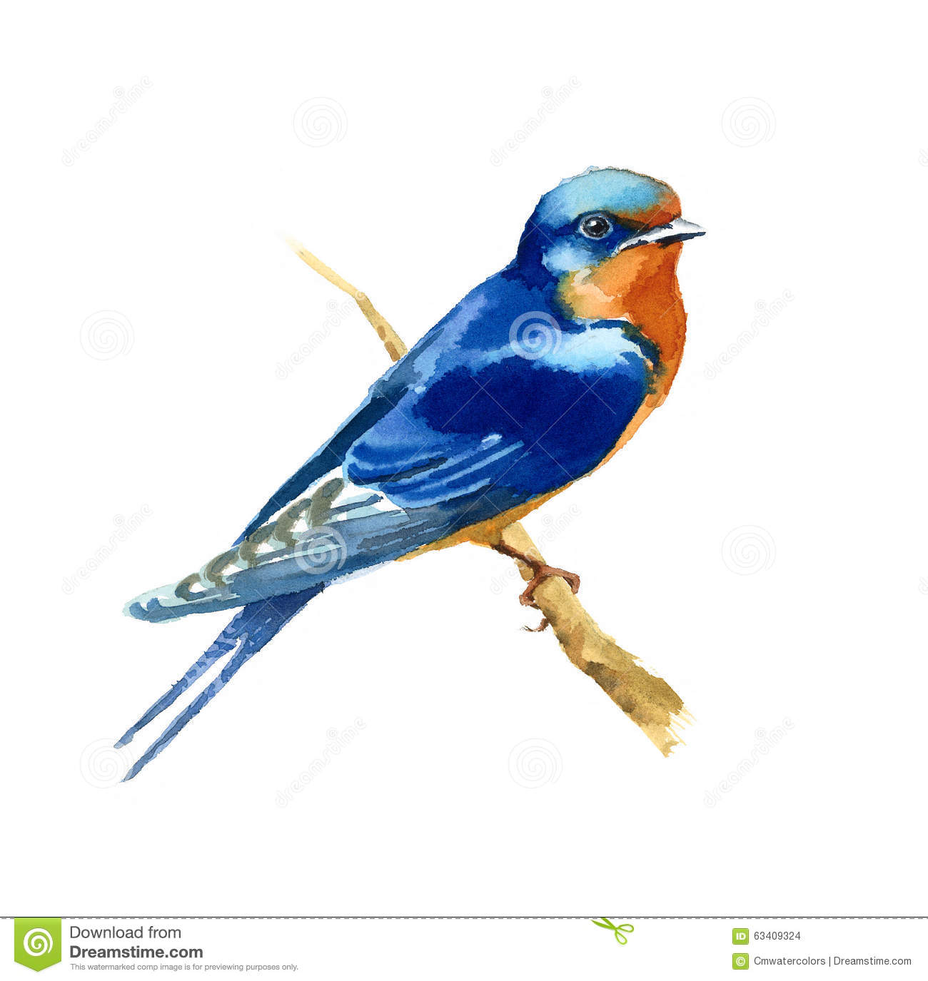 Barn Swallow clipart #15, Download drawings