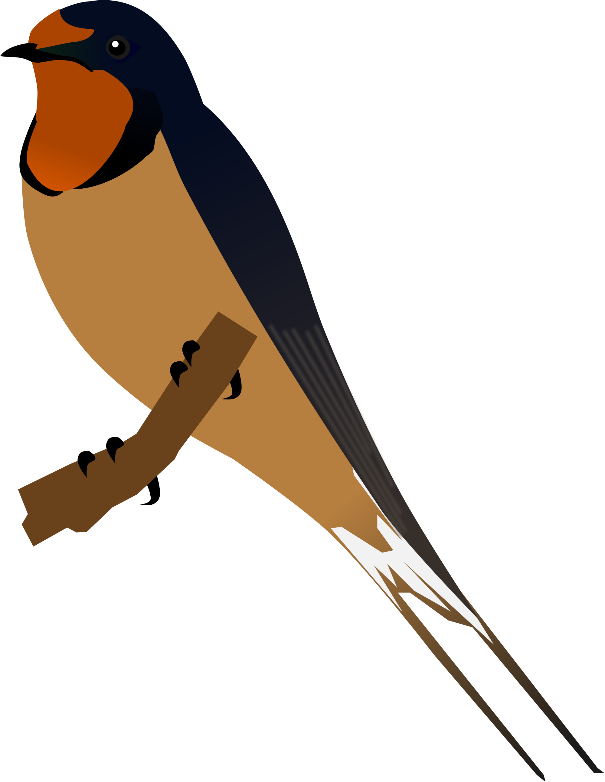 Barn Swallow svg #20, Download drawings