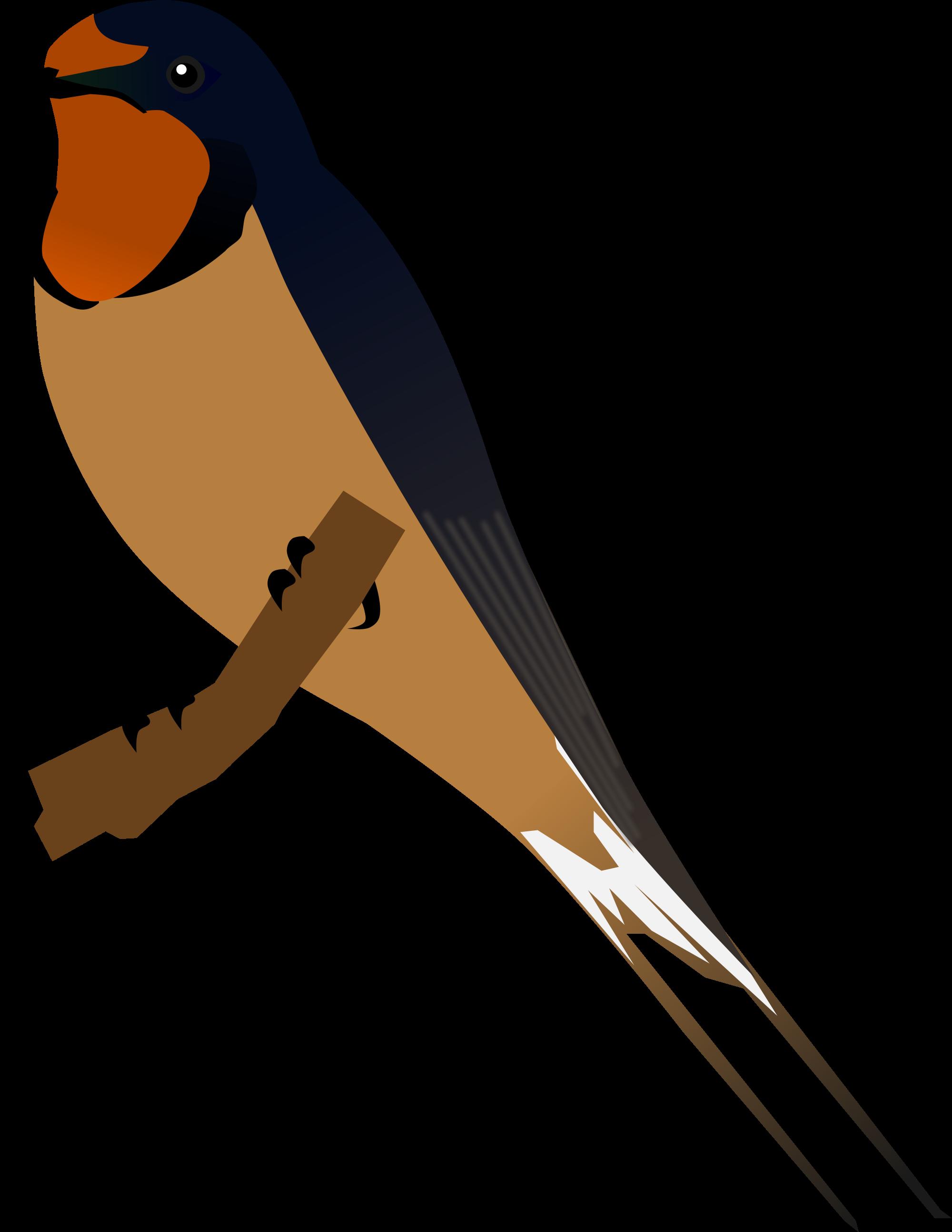 Barn Swallow svg #20, Download drawings