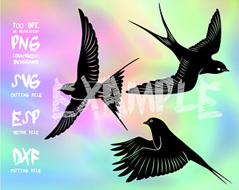 Swallow-tailed Hummingbird svg #19, Download drawings