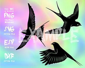 Barn Swallow svg #4, Download drawings