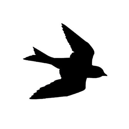 Barn Swallow svg #15, Download drawings