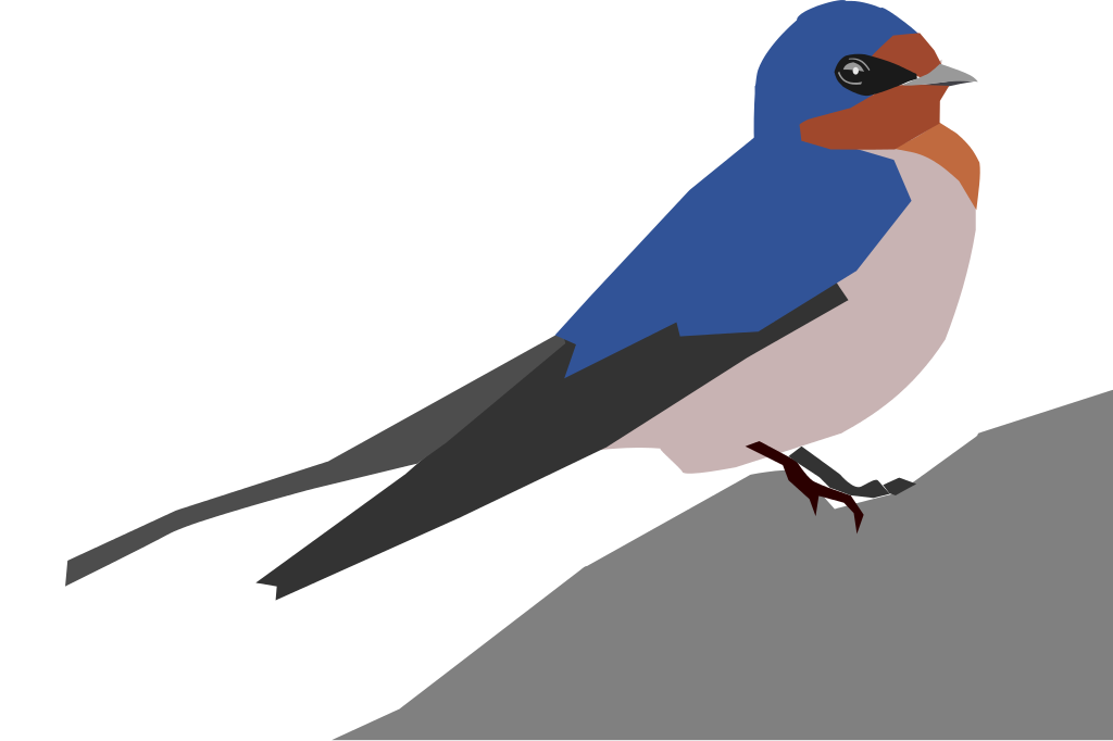 Barn Swallow svg #18, Download drawings