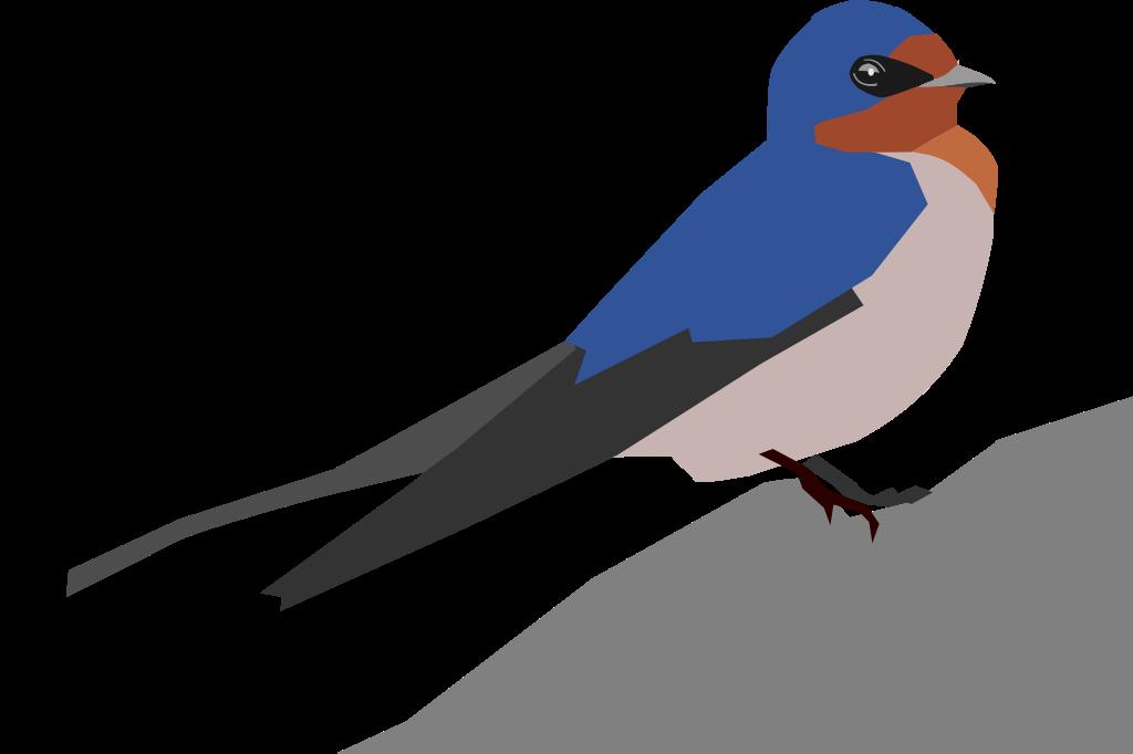 Barn Swallow svg #18, Download drawings