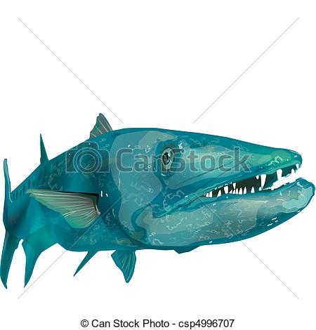 Barracuda clipart #13, Download drawings