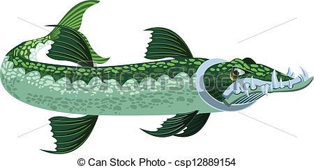 Barracuda clipart #9, Download drawings