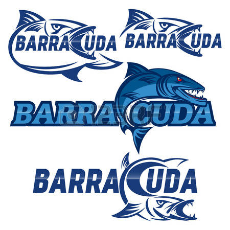 Barracuda clipart #1, Download drawings