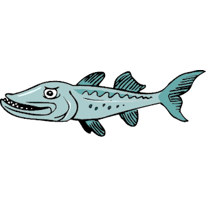 Barracuda clipart #17, Download drawings